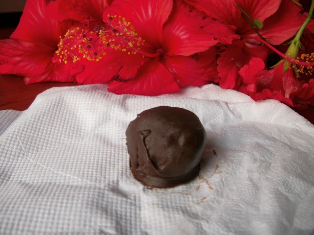 Homemade Bounty Chocolate and a Giveaway for my 200th Post