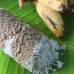 Kambu Maavu Puttu Recipe – Pearl Millet Puttu Recipe